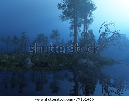 Enchanted Moonlit Forest - stock photo