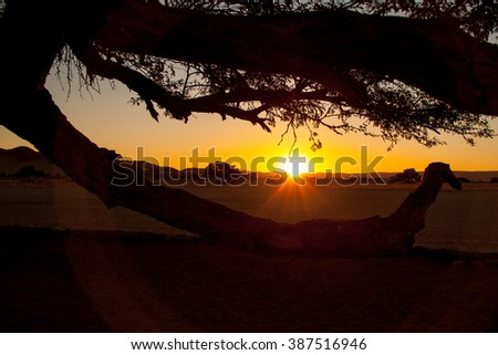 End of a Safari-day, Sunset behind Tree in Africa - stock photo
