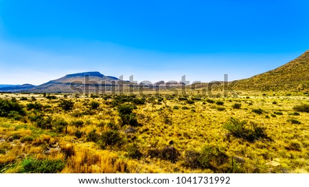 Endless wide open landscape of the semi desert Karoo Region in Free State and Eastern Cape provinces in South Africa under blue sky