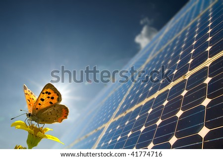 Energy and butterfly - stock photo