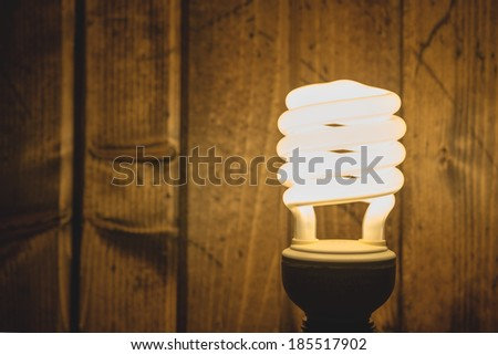Energy Efficient Light Bulb - stock photo