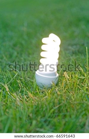 energy saving bulb on grass. - stock photo