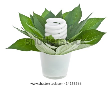 energy saving light bulb - environmental theme - stock photo