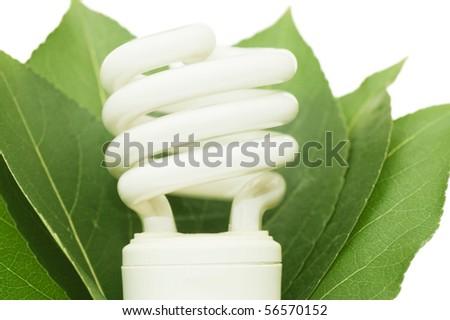 energy saving light bulb on green leaves - stock photo