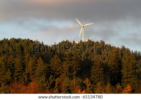 energy wind power mills in forest