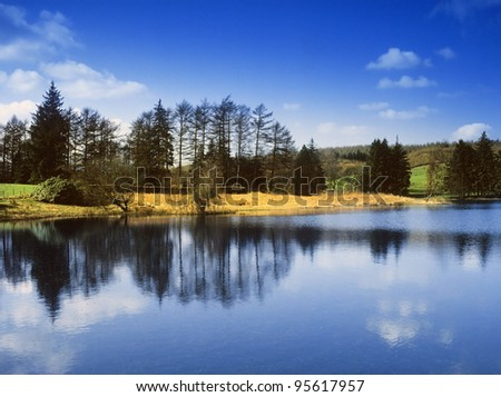 england cumbria lake district national park far sawrey near where beatrix potter lived - moss eccles tarn (reservoir)  claife heights - stock photo