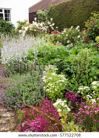 English Cottage Garden In Mid Summer With Perennial Flower Border Full Bloom