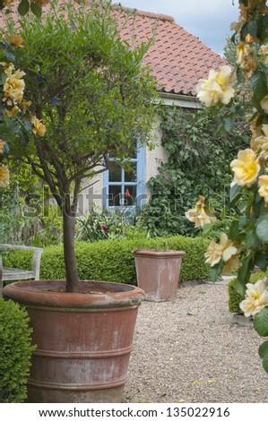 English cottage garden patio. - stock photo