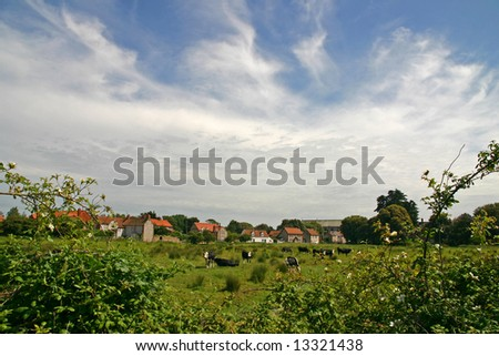 English country village green field and cows - stock photo