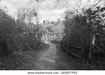 English countryside - footpath with a church at the hill  - stock photo