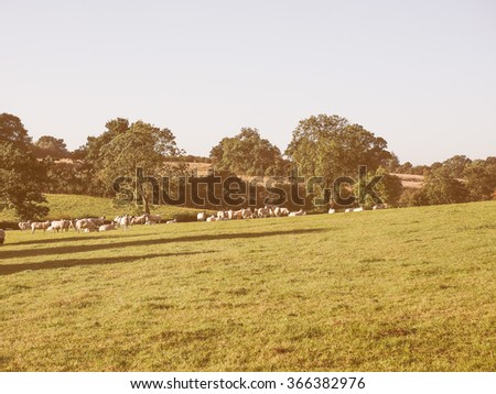 English countryside in Tanworth in Arden Warwickshire, UK vintage - stock photo