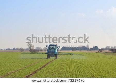 english landscape with a blue tractor mounted crop sprayer in action on a field of winter wheat in february