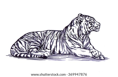 how to draw tiger stripes in photoshop
