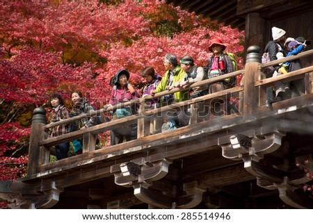 Engyoji Temple at Mt. Shosha, Japan 24 Nov 2014: Group of Tourist enjoy autumn scene at Engyoji Temple, Hyogo, Japan - stock photo