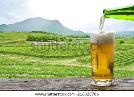 Enjoy beer with vineyard landscape.  - stock photo