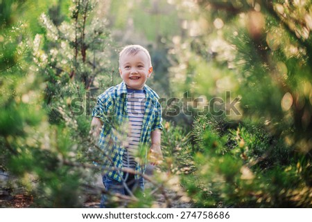 Enjoying sunny day. Cute little boy playing hide and seek in fir forest - stock photo