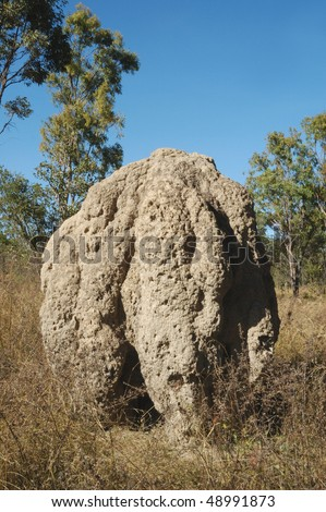 Enormous Termite Mound in Kakadu National Park - stock photo