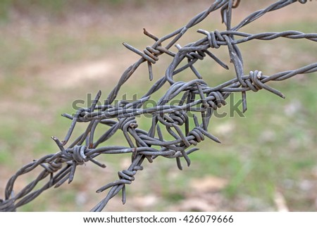 entangle with barbed wire - stock photo