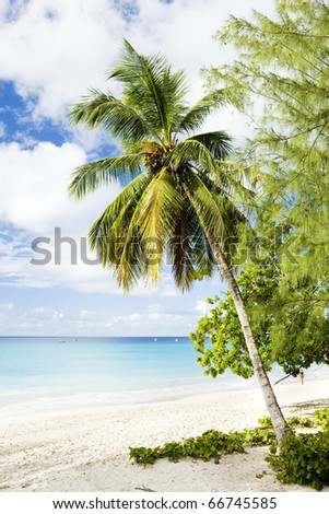 Enterprise Beach, Barbados, Caribbean - stock photo