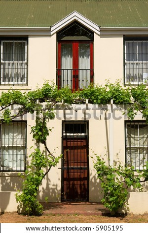 Entrance door into residential house with plants. Shot in Stellenbosch, Western Cape, South Africa.
