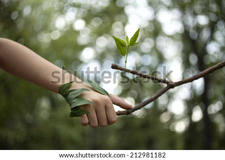 Environment concept. Handshake between human hand and tree. - stock photo