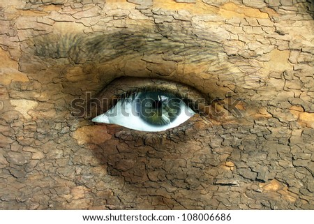 Environment concept - human face with an open eye covered in a tree bark texture - stock photo