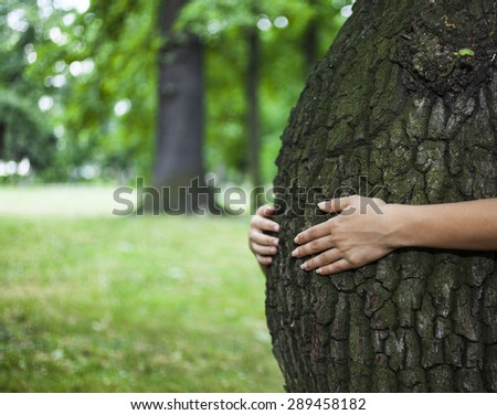 Environment concept. Human hands hugging a tree that looks like the belly of a pregnant woman. - stock photo