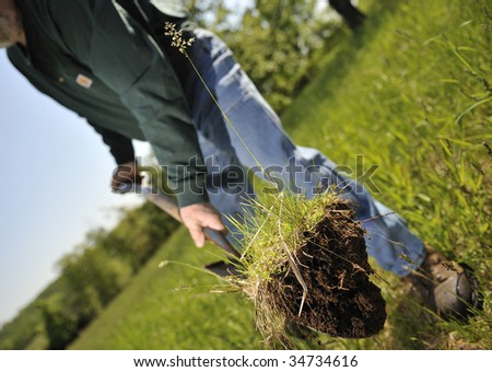 Environment Conservation being done by a working planting trees - stock photo