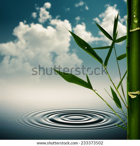 Environmental asian backgrounds with bamboo grass - stock photo