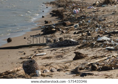 Environmental Pollution on the Beach in Thailand