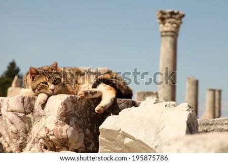 Ephesus - stock photo