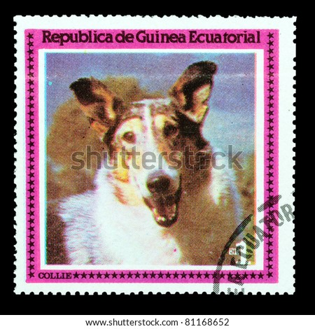 EQUATORIAL GUINEA - CIRCA 1978: A stamp printed by EQUATORIAL GUINEA shows a dog Collie, circa 1978 - stock photo