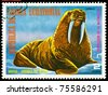 EQUATORIAL GUINEA - CIRCA 1977: A Stamp sheet printed in EQUATORIAL GUINEA shows a collection of Wild animals of the North America, Walrus, series, circa 1977 - stock photo