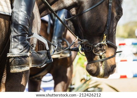 Equestrian Horses Boots accessories Equestrian Horse Show jumping close-up boots accesories riders horses - stock photo