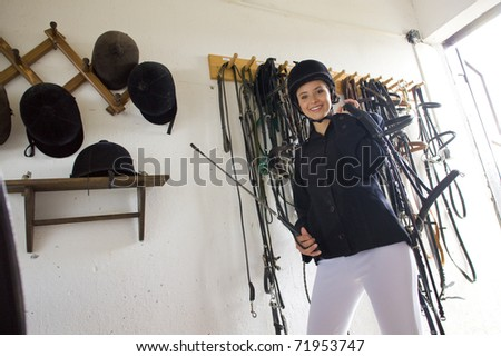 equestrian in a stable - stock photo