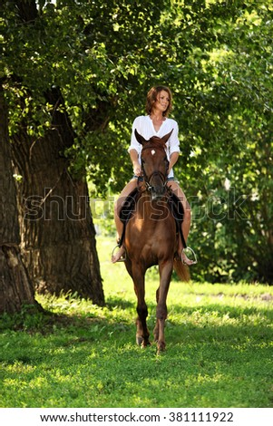 Equestrian riding horse in evening woods, in the background a summer countryside - stock photo