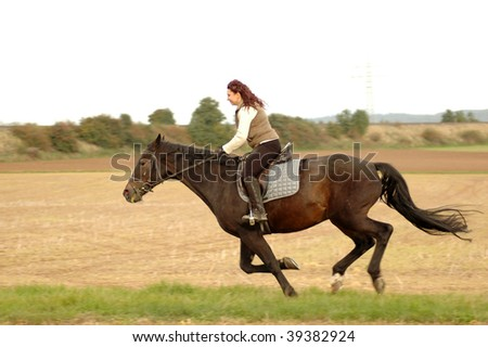 Equestrienne rides on a horse at a gallop. Hanoverian.