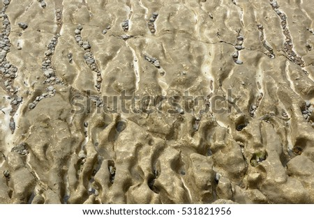Eroded chalk (Calcium Carbonate) seabed with small rock pools and pebbles. Near Brighton, East Sussex, England