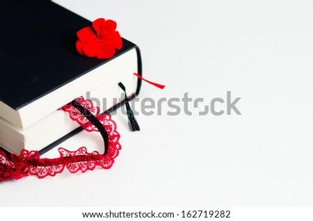 Erotic novel - stock photo