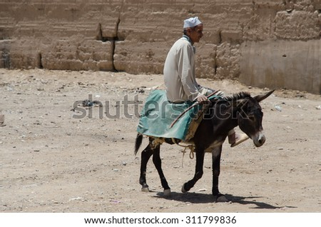 Errachidia, Morocco, CIRCA MAY 2013: Desert city in Africa, Morocco. Donkeys are here commonly animals - stock photo