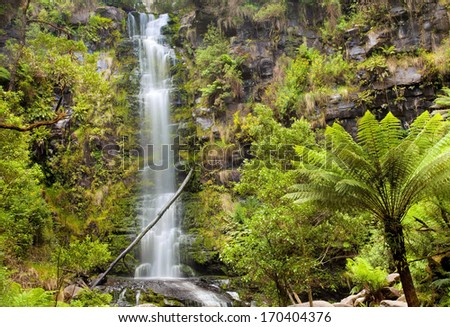 Erskine Falls, Great Ocean Road, Australia  - stock photo