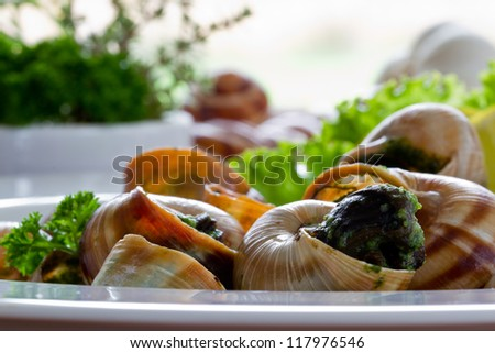 Escargots de Bourgogne (snails with herbs butter) - stock photo