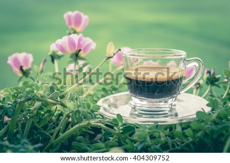 Espresso coffee in glass cup with flowers over blurred image of green field rice in the north of thailand,Wiang pa pao, Chaing Rai - stock photo