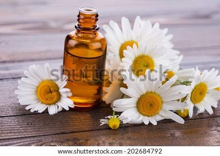 Essential aroma oil with chamomile on wooden background. Selective focus.