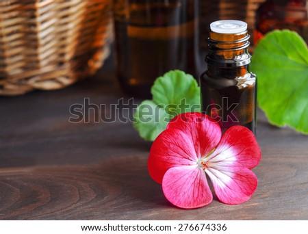 Essential geranium oil - stock photo