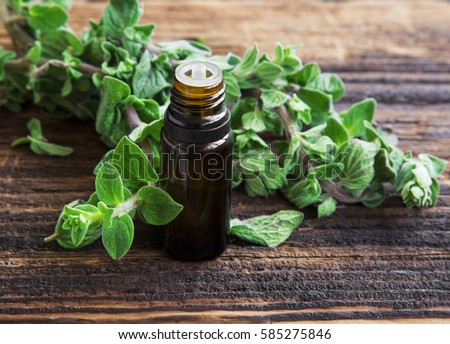 Essential oil bottle of oregano herb with fresh oregano leaves