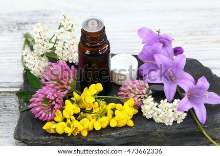 Essential oil from medical flowers flowering in the summer meadows