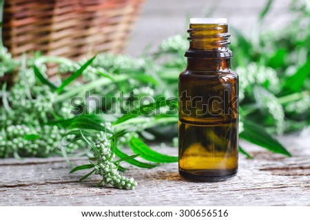 Essential wormwood oil - stock photo