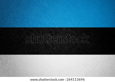 Estonia flag leather texture - stock photo