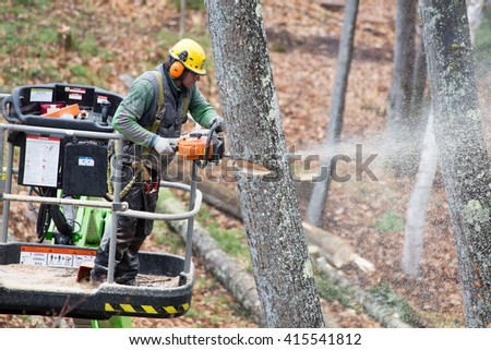 ETNA, NEW HAMPSHIRE -.A professional tree cutter or lumberjack at work.in Etna, New Hampshire on May 4, 2016 in Etna, New Hampshire. - stock photo